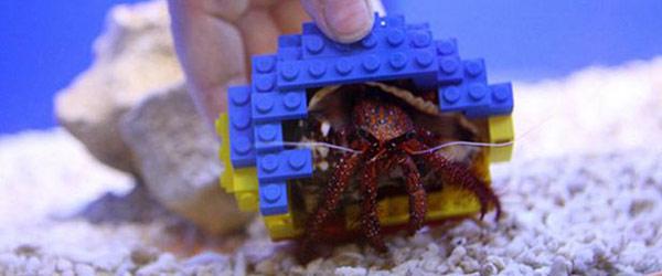 LEGO寄居蟹