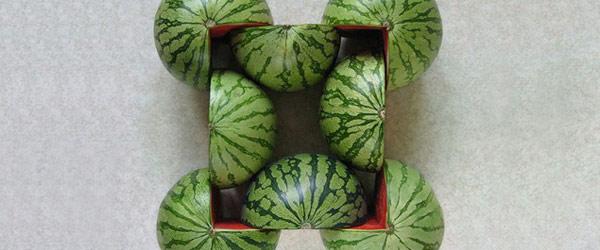 水果幾何圖形