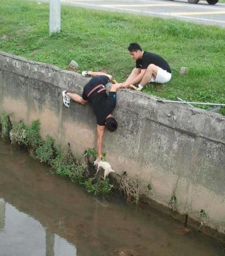 2012年讓你對人類重拾信心的12張照片17