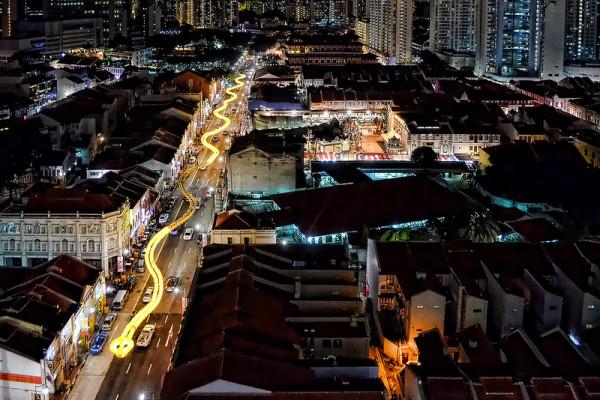 新加坡的超長蛇燈籠1