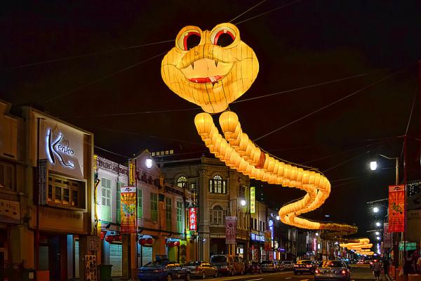 新加坡的超長蛇燈籠2