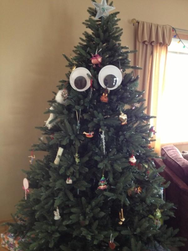 事實證明,玩具眼睛讓世界更美好14