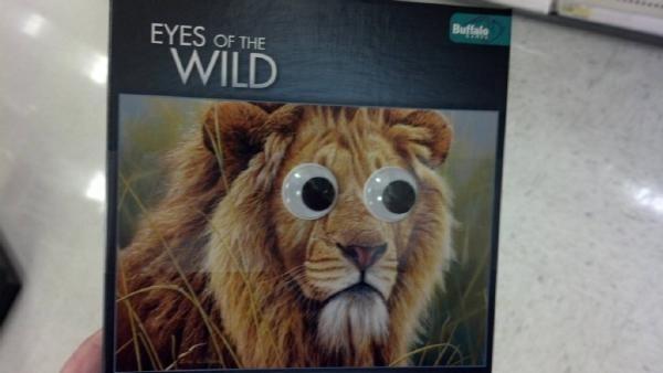 事實證明,玩具眼睛讓世界更美好25
