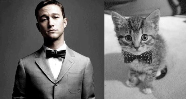 男人與貓做一樣的動作1