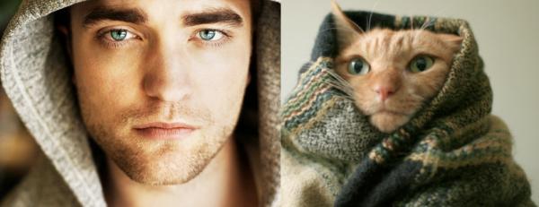 男人與貓做一樣的動作13
