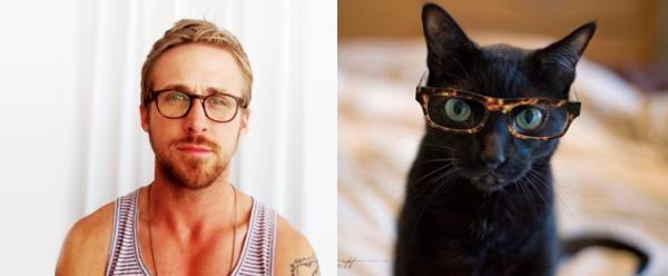 男人與貓做一樣的動作4