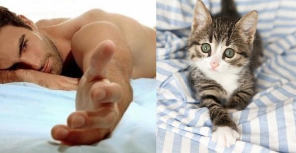 男人與貓做一樣的動作5