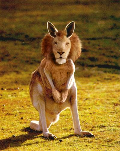 20種不能不存在的混血合體動物17