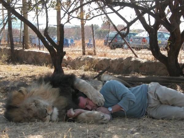 他跟獅子是好麻吉!11