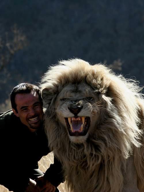 他跟獅子是好麻吉!13