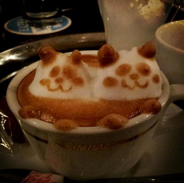 可愛到炸開!拿鐵咖啡奶泡做的動物10