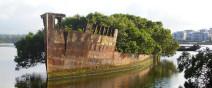 百年老船變身成漂流森林