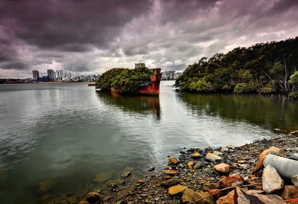百年老船變身成漂流森林6