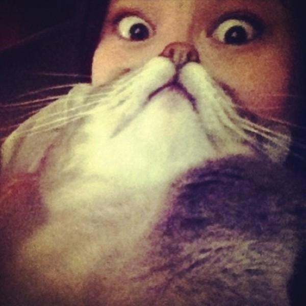 貓貓嘴!2