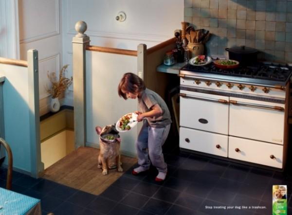 狗狗不是你的廚餘桶!2