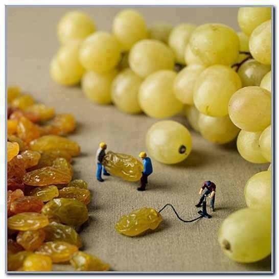 葡萄乾當然是這樣來的1