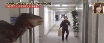 快掏啊!日本超誇張迅猛龍惡作劇