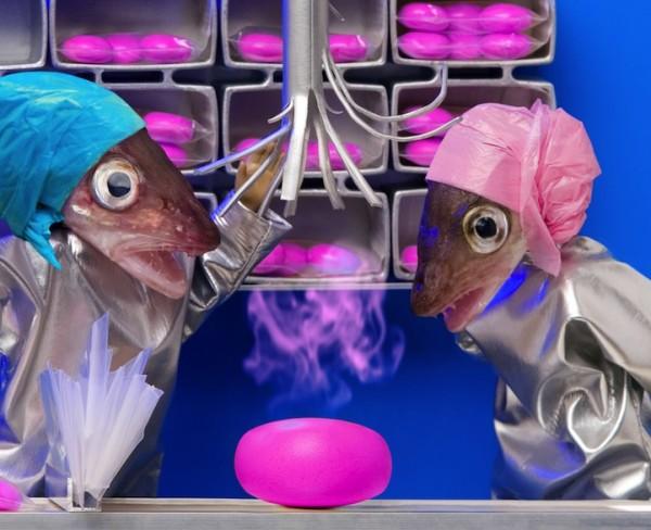 死魚也能活靈活現!怪趣魚頭上班的樣子4