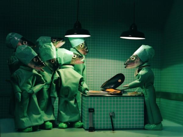 死魚也能活靈活現!怪趣魚頭上班的樣子7