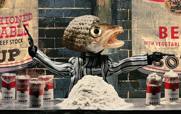 死魚也能活靈活現!怪趣魚頭上班的樣子9