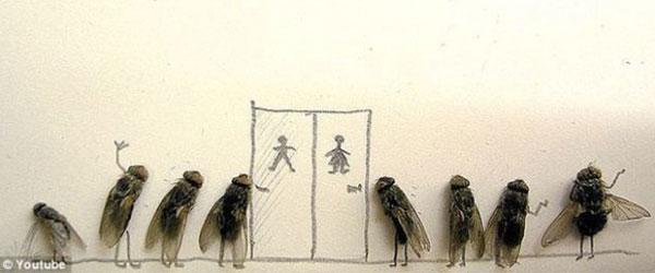 用蒼蠅屍體創作的藝術