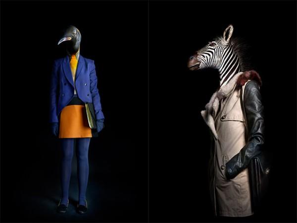 穿得比你還時尚的動物們2