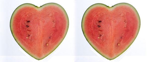 世界上第一顆愛心形西瓜0