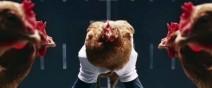 公雞的誇張平衡能力(僅限頭部)0