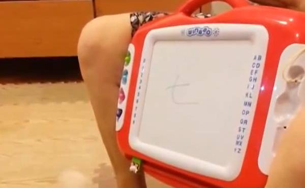 台灣神狗!會聽讀中文台語而且數學超強6