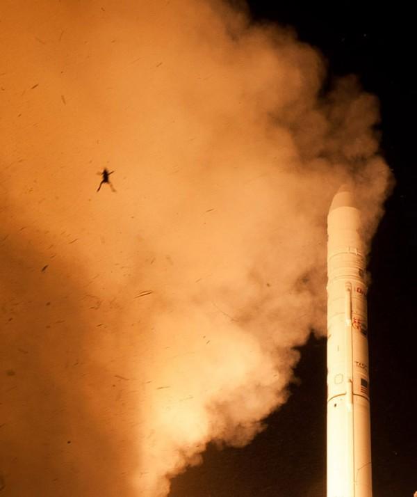 呃...NASA火箭升空,一隻青蛙彈射出來2