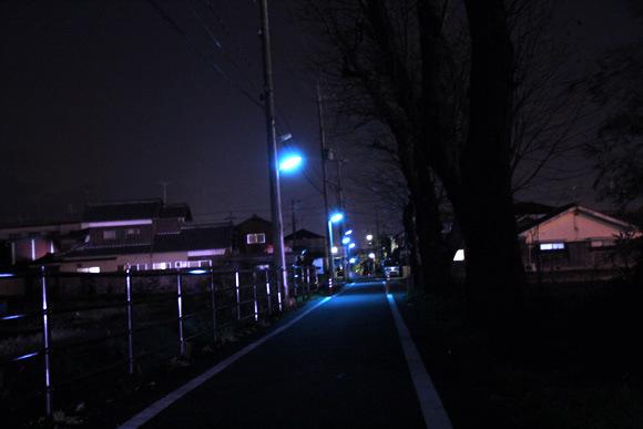 為什麼日本的夜晚是螢光藍?6