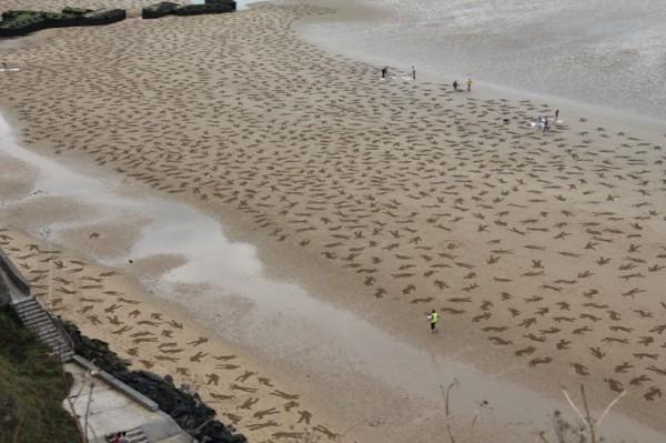 重演諾曼第登陸!9000沙人終被海水吞沒1