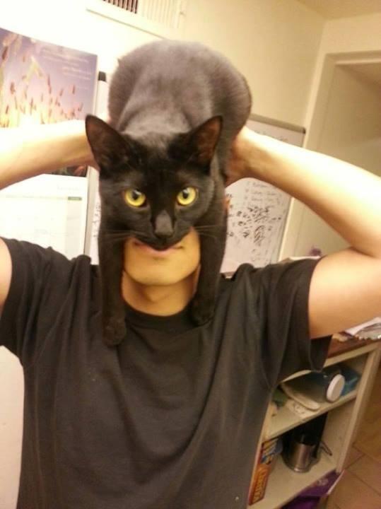 一秒變蝙蝠俠!1