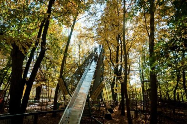 四十年打造森林裡的遊樂園3