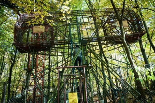 四十年打造森林裡的遊樂園4