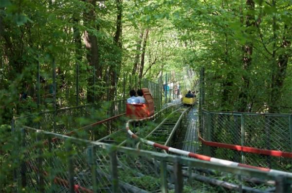 四十年打造森林裡的遊樂園7