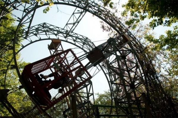 四十年打造森林裡的遊樂園8