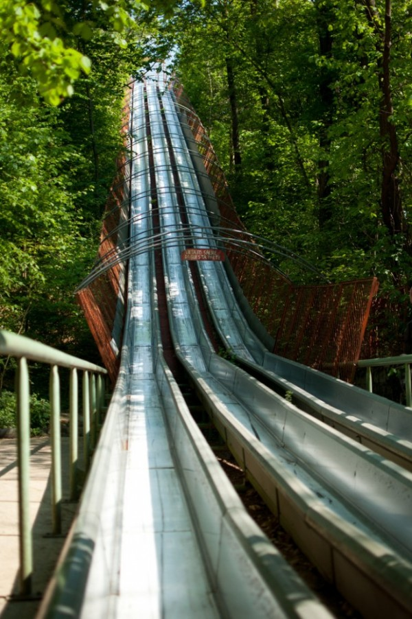 四十年打造森林裡的遊樂園9
