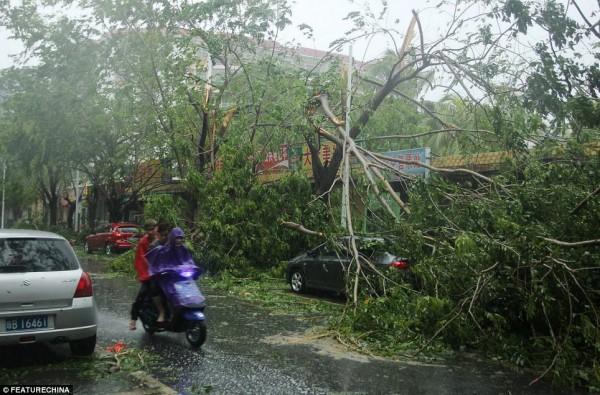 如果你是還有一點理智的台灣人,請分享這篇了解如何幫助菲國受災戶27
