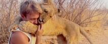 獅子跟人擁抱,擁抱動機是最美的部分...