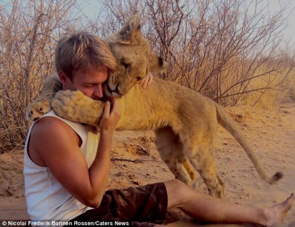 獅子跟人擁抱,擁抱動機是最美的部分...2