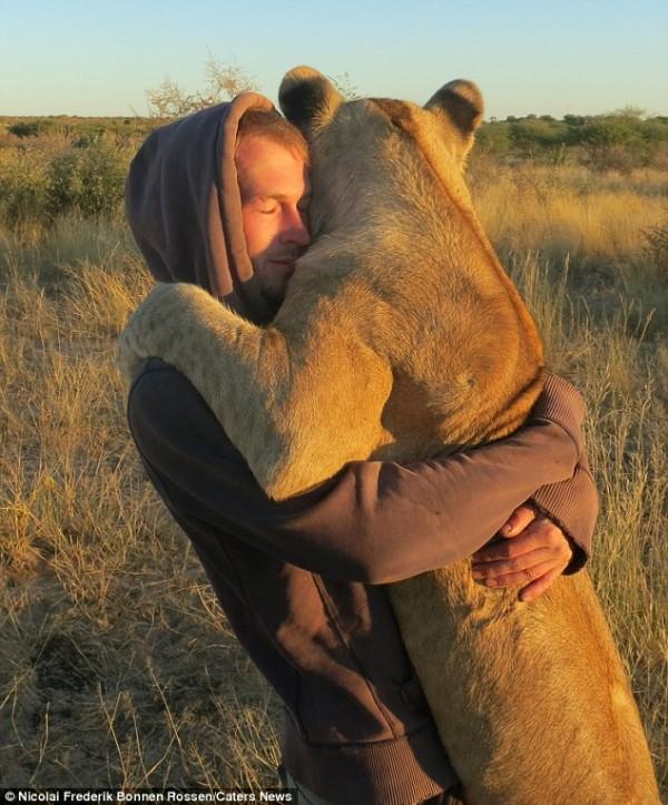 獅子跟人擁抱,擁抱動機是最美的部分...5