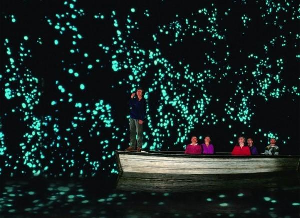 紐西蘭的螢火蟲寶寶讓整個洞穴看起來像銀河!4