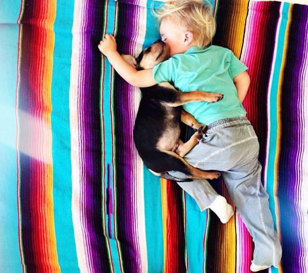 萌度超標!小孩和小狗每天一起睡午覺11