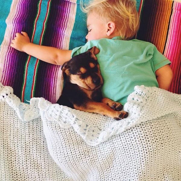 萌度超標!小孩和小狗每天一起睡午覺12