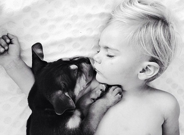 萌度超標!小孩和小狗每天一起睡午覺14