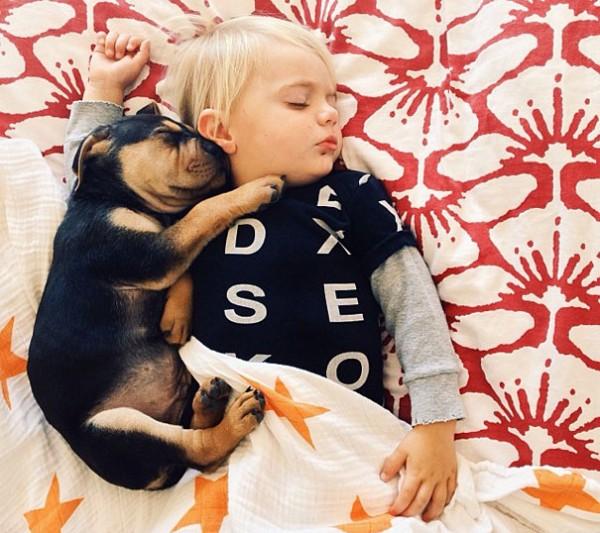 萌度超標!小孩和小狗每天一起睡午覺3