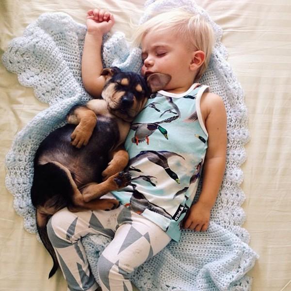萌度超標!小孩和小狗每天一起睡午覺4