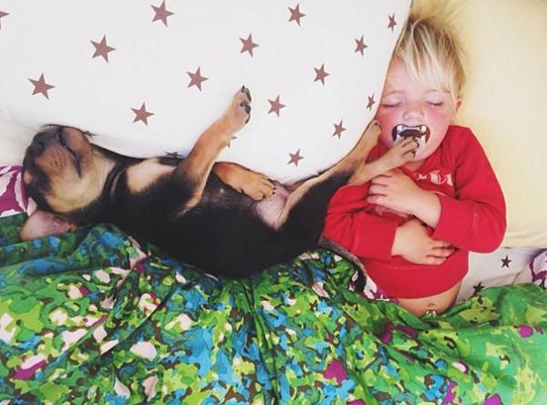 萌度超標!小孩和小狗每天一起睡午覺5