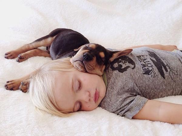 萌度超標!小孩和小狗每天一起睡午覺6